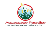 Aquascape Paradise